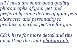 All I need are some good quality photographs of your pet and preferably some details of your pets character and personality to produce a perfect picture for you.  Click here for more detail and tips on getting the right photograph.