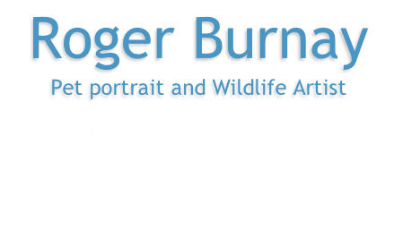 Roger Burnay  Pet portrait and Wildlife Artist